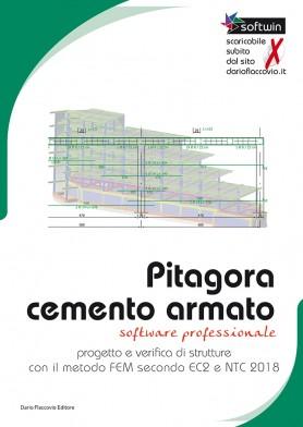 Pitagora Cemento Armato - Progetto e verifica di strutture con il metodo FEM secondo EC5 e NTC 2018