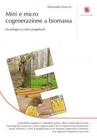 Mini e micro cogenerazione a biomassa